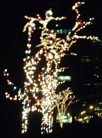 rock_ctr_trees_lights (15k image)